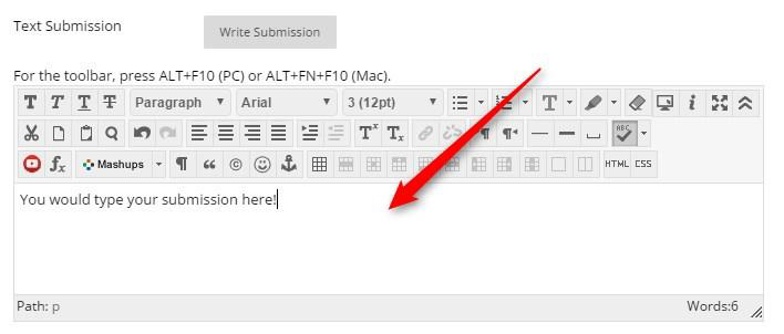 A text area will appear where you can type your submission.