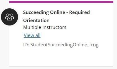 succeeding online