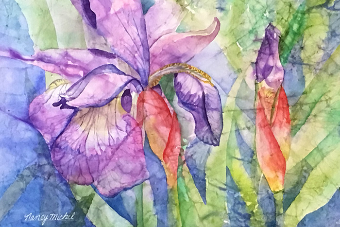 Pond Iris by Nancy Michel
