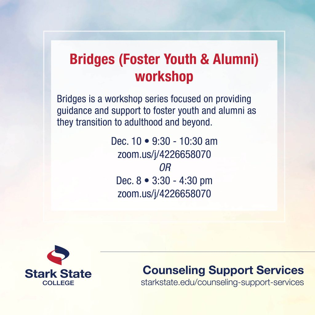 Bridges (Foster Youth and Alumni) workshop